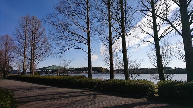 佐鳴湖・佐鳴湖公園