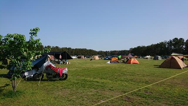 渚園 キャンプ場