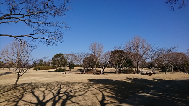 石人の星公園 芝生広場