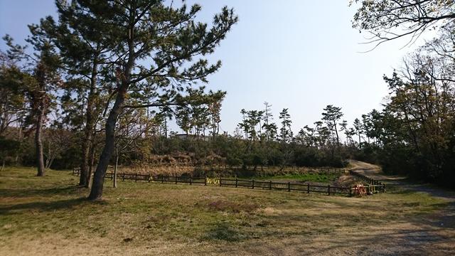 遠州灘海浜公園(白羽地区・凧場公園)ひょうたん池