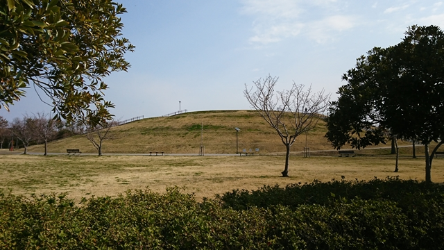 風車公園 芝生広場