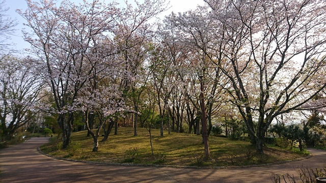 万葉の森公園 散策歩道
