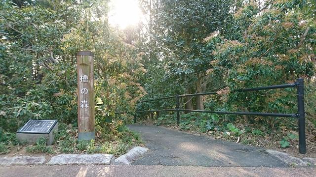 万葉の森公園 檜の森