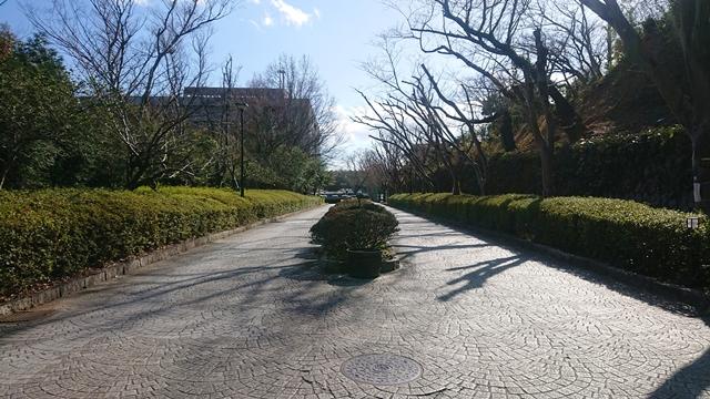 浜松城公園 メインストリート