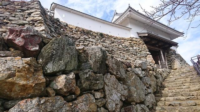 浜松城(石垣)