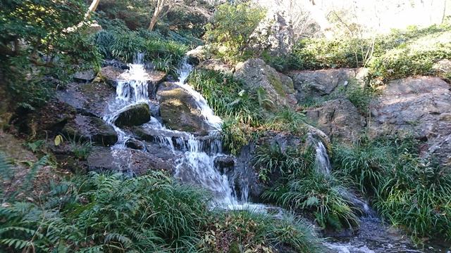 浜松城公園(日本庭園)