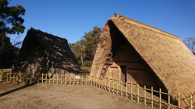 蜆塚公園 竪穴住居