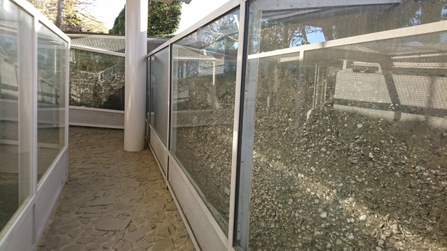 蜆塚遺跡 貝層保存施設