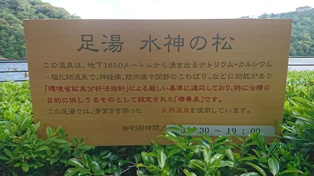 水神の松公園(足湯・水神の松)
