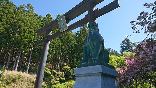 秋葉山本宮秋葉神社(上社)鳥居・狛犬
